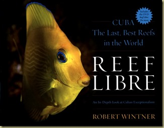 Reef Libre by Robert Wintner - Thoughts in Progress