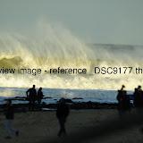 _DSC9177.thumb.jpg
