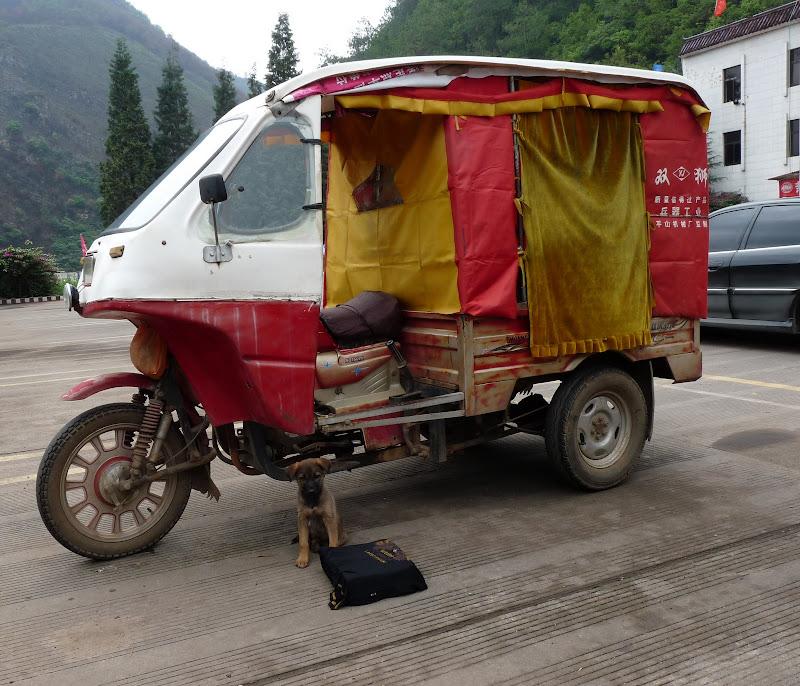 Chine.Yunnan Wen shan et BA MEI 1 - P1260769.JPG