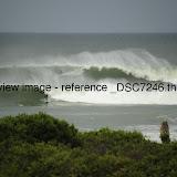 _DSC7246.thumb.jpg