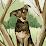Lin Zhuo's profile photo