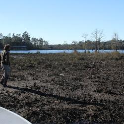 Fowl Marsh Jan18 2013 026
