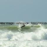 _DSC7902.thumb.jpg