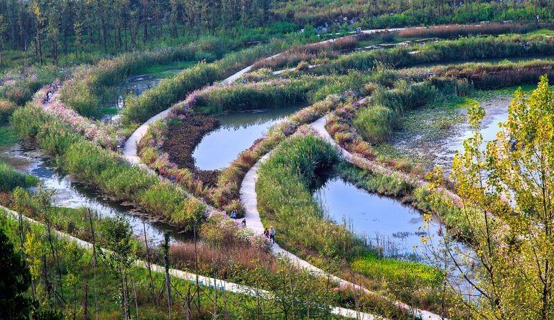 yanweizhou-park-3