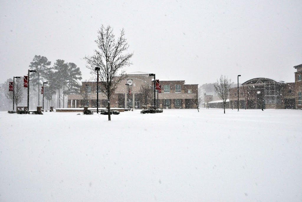 UACCH Snow Day 2011 - DSC_0008.JPG