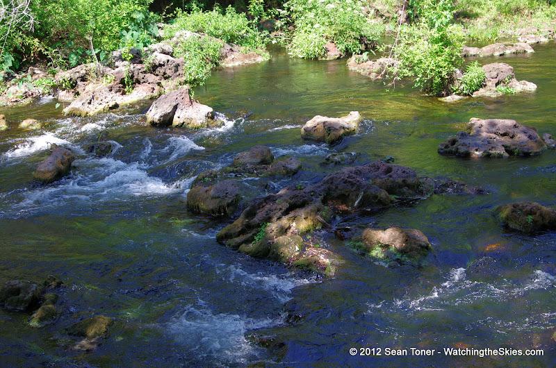 04-04-12 Hillsborough River State Park - IMGP9698.JPG