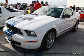 Modern Shelby 500 front