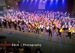Han Balk Voorster Dansdag 2016-3915-2.jpg