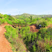 santiago-oaks-IMG_0464.jpg