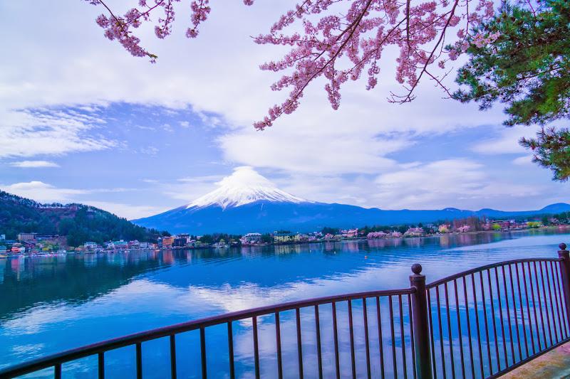 Lake kawaguchiko, cherry blossoms, Mt Fuji, Ubuyagasaki 5