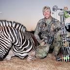 57-Dud_Zebra2.jpg