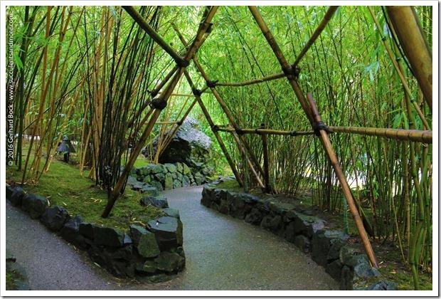 160906_Butchart_Gardens_0125