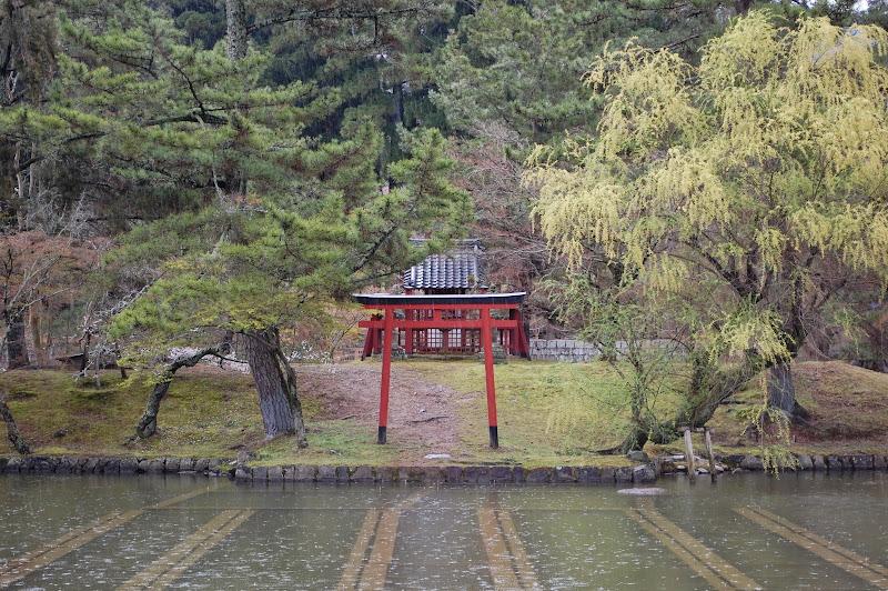 2014 Japan - Dag 8 - jordi-DSC_0479.JPG