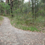 Mambara Track (82834)