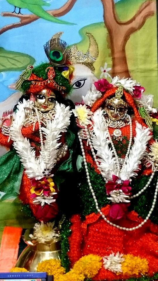 ISKCON Bhusawal Deity Darshan 23 Jan 2016 (3)