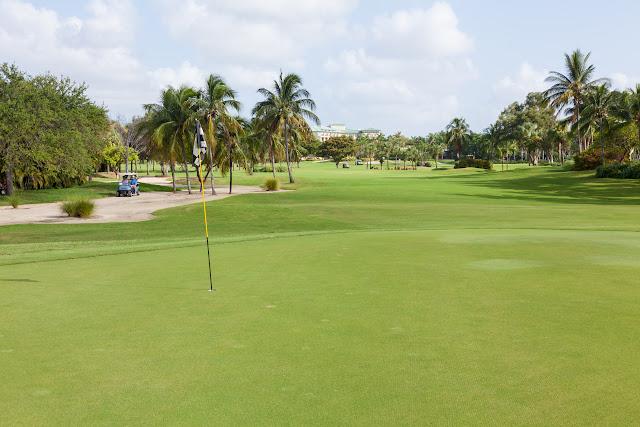 2015 Golf Tournament - 2015%2BLAAIA%2BConvention-1497.jpg