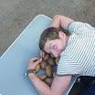 meine_potatoes.jpg