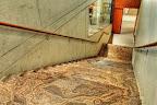 Polished Eramosa Limestone Stairs