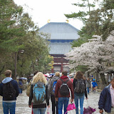 2014 Japan - Dag 8 - jordi-DSC_0475.JPG