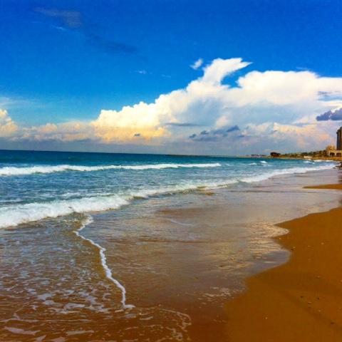Israël Méditerranée