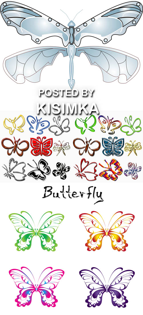 Stock Photo: Butterfly 3