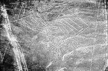 Las líneas de Nazca - El pelícano - HistoriadelasCivilizaciones.com