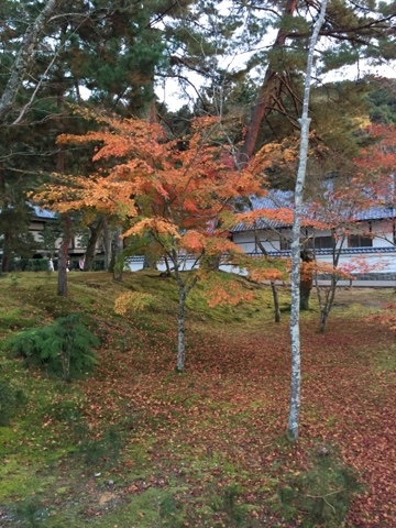 Nanzenji temple, in Kyoto Japan is one of the best places to see the gorgeous fall colours in Kyoto.
