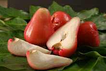 Indonesian wax jambu 08