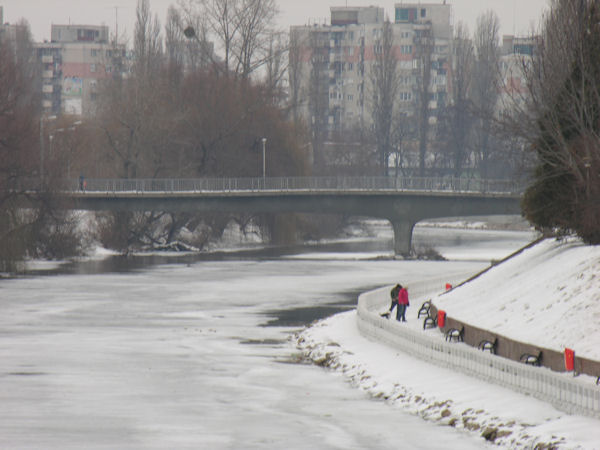 Oradea înzăpezită în 19 februarie 2012 #4