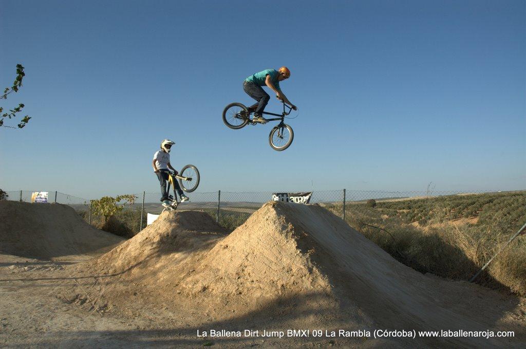 Ballena Dirt Jump BMX 2009 - BMX_09_0116.jpg