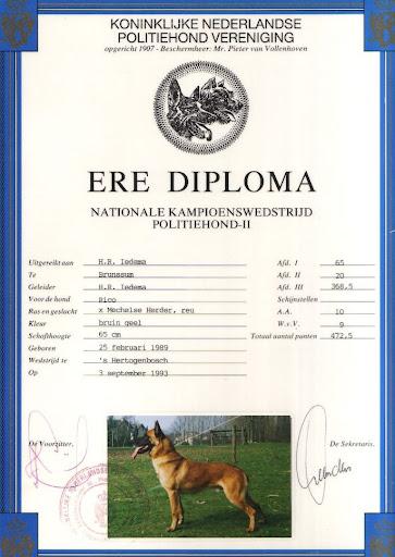 Ere Diploma Rico 2