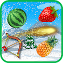 Fruit Shoot icon