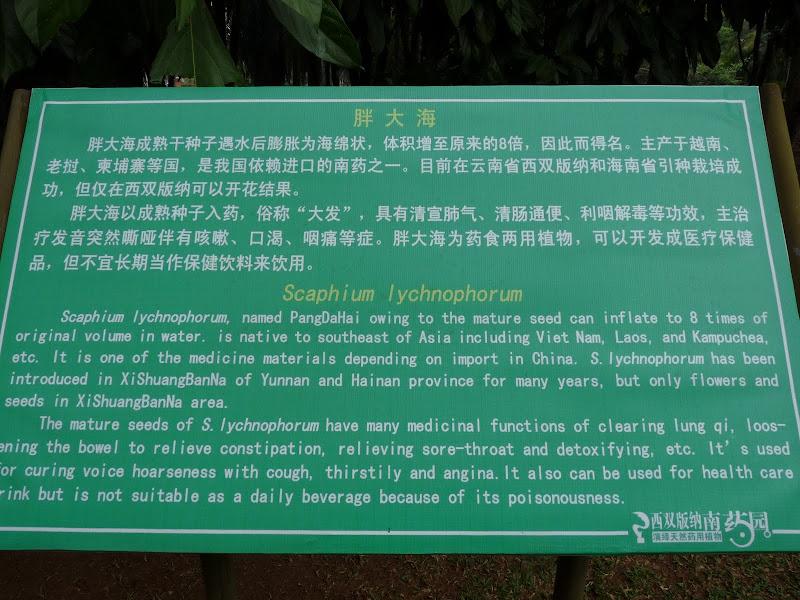 Chine .Yunnan . Lac au sud de Kunming ,Jinghong xishangbanna,+ grand jardin botanique, de Chine +j - Picture1%2B691.jpg