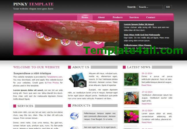 Free Blogging Pink Black CSS Website Template Style