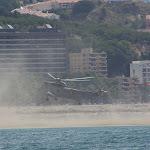 Aterrizaje en La Malagueta.jpg