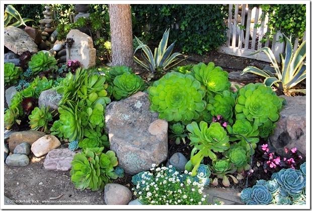 160515_PenceGardenTour_Garden7_003