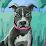 kalai megam's profile photo