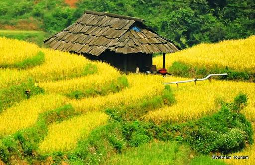 Tiềm năng du lịch của huyện Mù Cang Chải