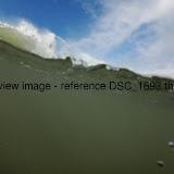 DSC_1693.thumb.jpg