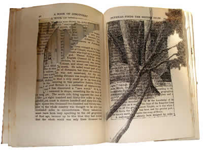 Book Of Shadows 22, Book Of Shadows