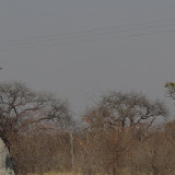 Trans Kalahari Tour, August 2011