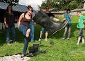 Foto 1. Bildergalerie motion_olymp_sommer13.jpg