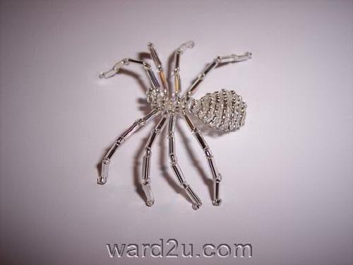 عناكب جميلة فى ورد للفنون