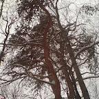 Зимний Вантит 116.jpg