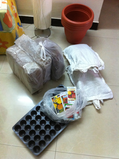 Just bought the supplies, coco peat, vermi culture, seeding tray and some seeds
