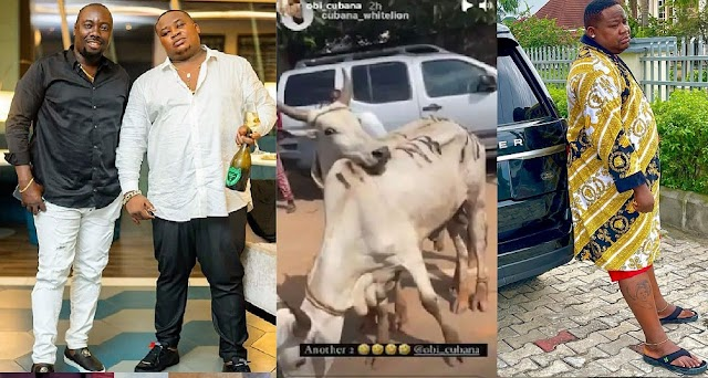 Cubana Chief Priest Cries Out As His Village People Demand 46 Goats After Giving Obi Cubana 46 Cows