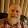 paul lockyer's profile photo