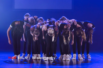 Han Balk Voorster Dansdag 2016-4576-2.jpg