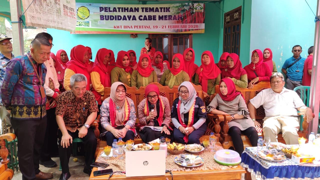 Manfaatkan Pekarangan dan Forkom, KWT Bina Pertani Sukses Raih Jutaan Rupiah