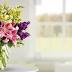 Convenient Flower Shops Online